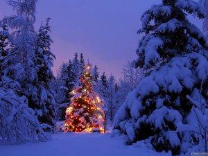 paesaggi-natalizi_0657